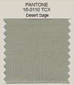 Pantone Desert Sage